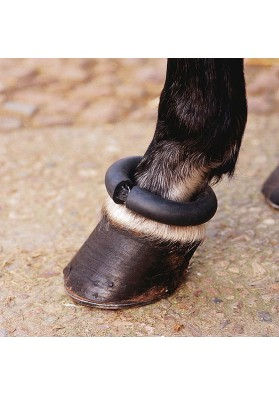 Protector Donus Equus England Para Menudillo De Establo (Incluido Correa)(Unidad)
