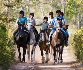 Montar a caballo es saludable